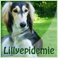 lillyepidemie