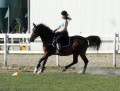horses.girl.7