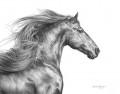 colorka