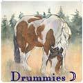 drummies ☽